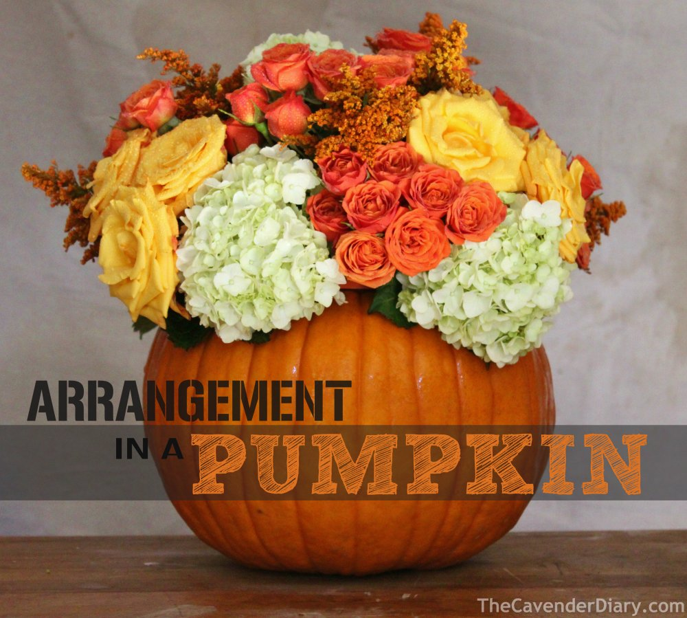 Arrangement in a Pumpkin by the Cavender Diary Boys
