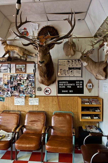 Barber SHop with Elk