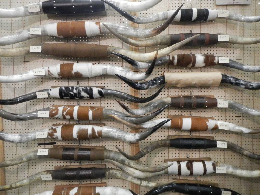 Wall of Longhorn Horns at the Ft Worth Stock Show