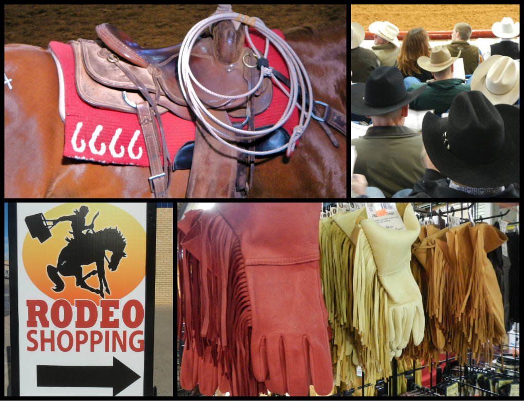 Ft Worth Stock Show Collage 2