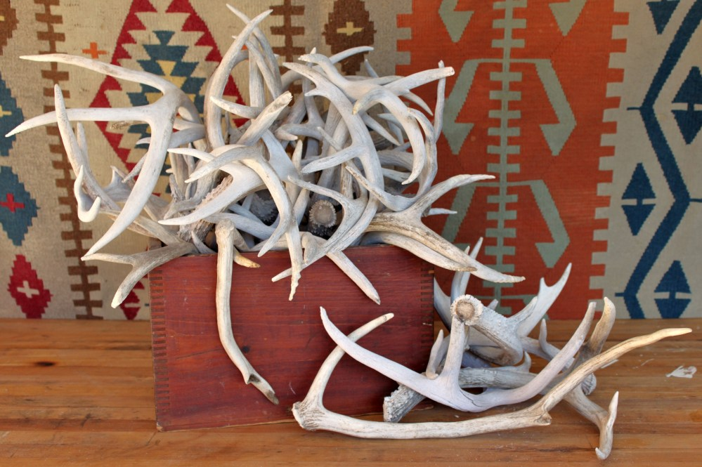 Wooden Crate Full of Antlers