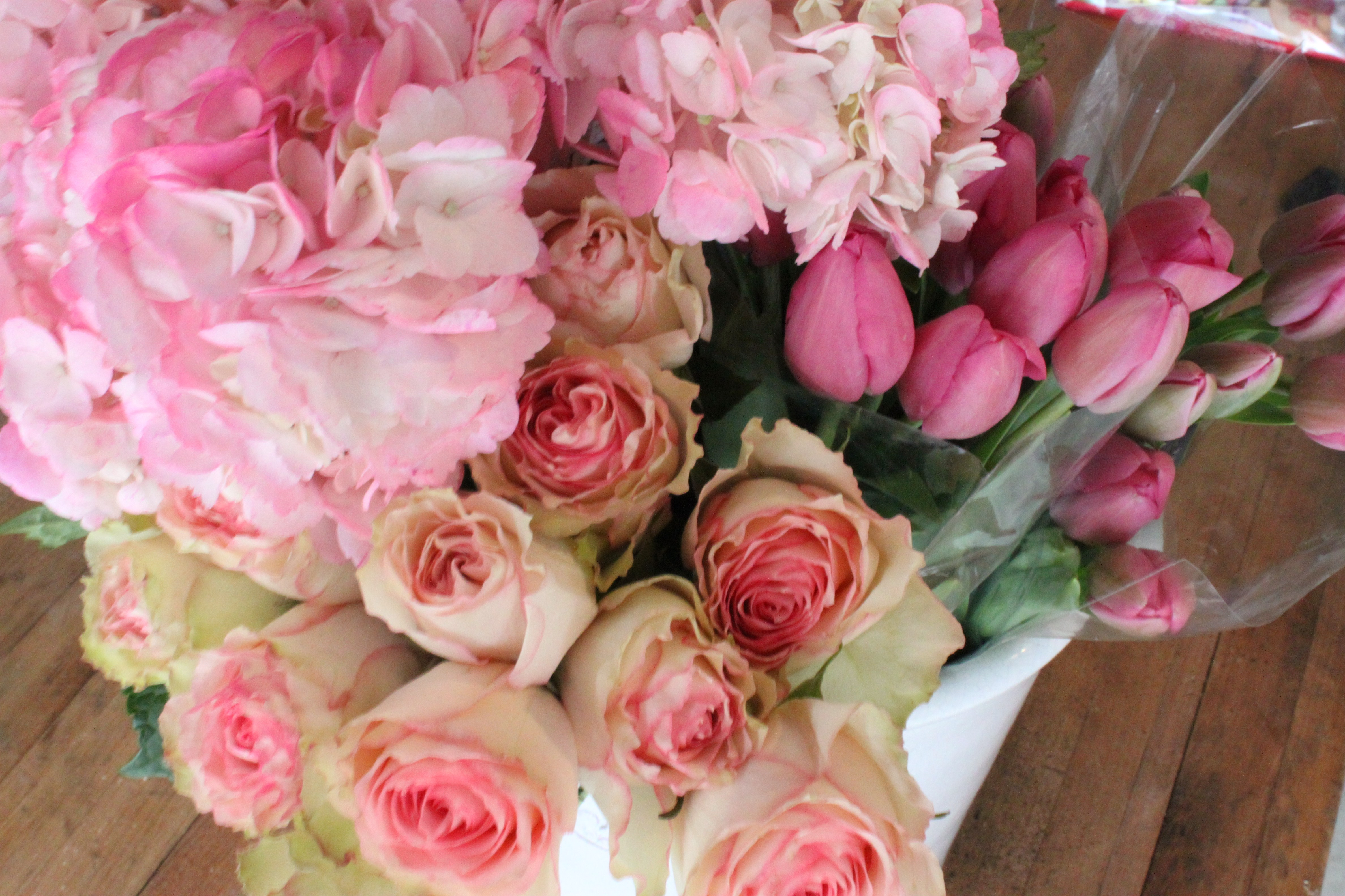 Roses And Tulips The Cavender Diary