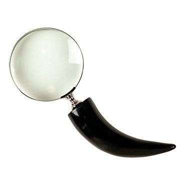 Franklin Magnifier