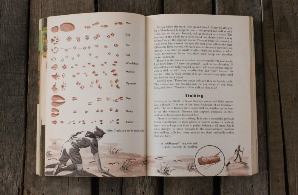Tracking Wildlife inthe Boy Scout Handbook
