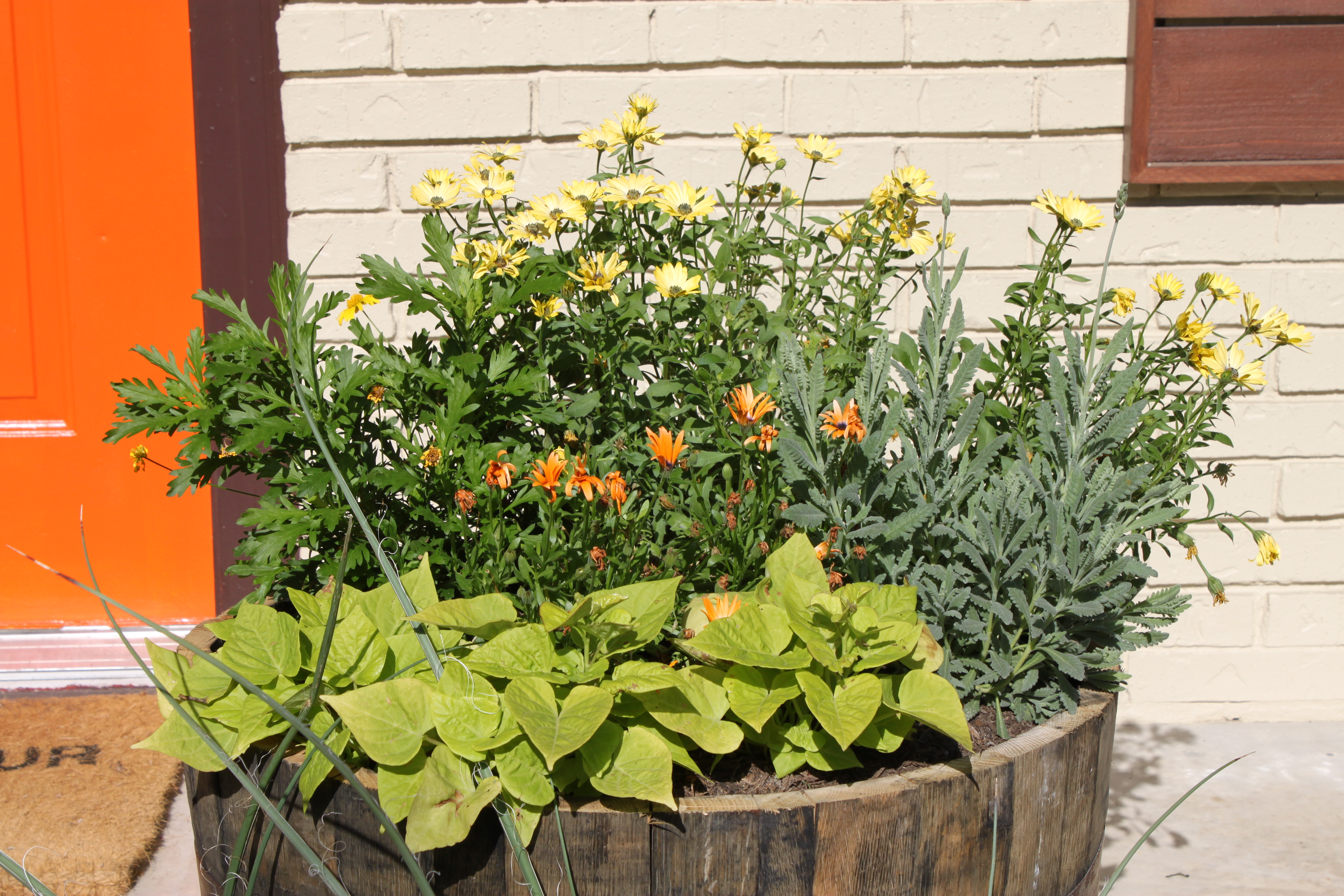 Whiskey Barrel Planter | THE CAVENDER DIARY