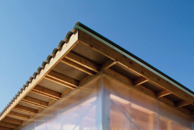Modern Workshed Roof Line