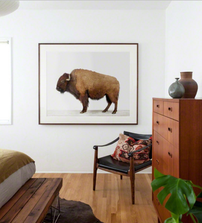 American Buffalo Styled in Bedroom