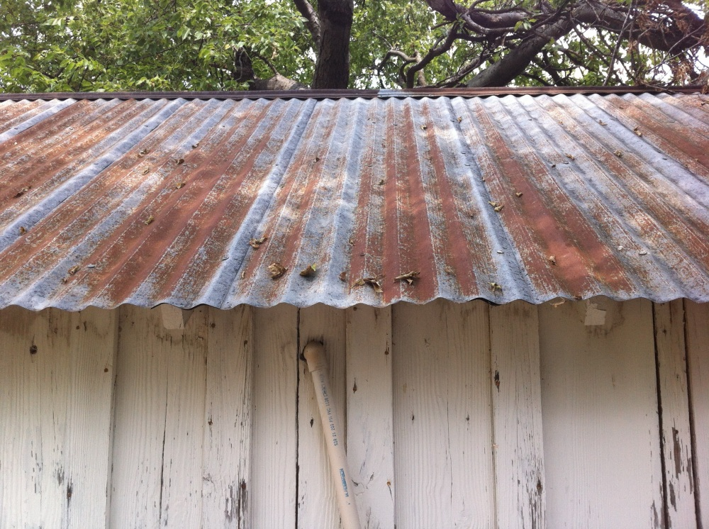 Tin Shed Roof