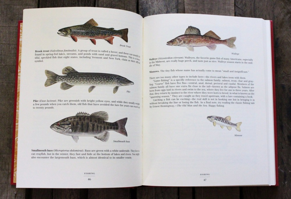 Identifing Fish inthe Dangerous Book for Boys