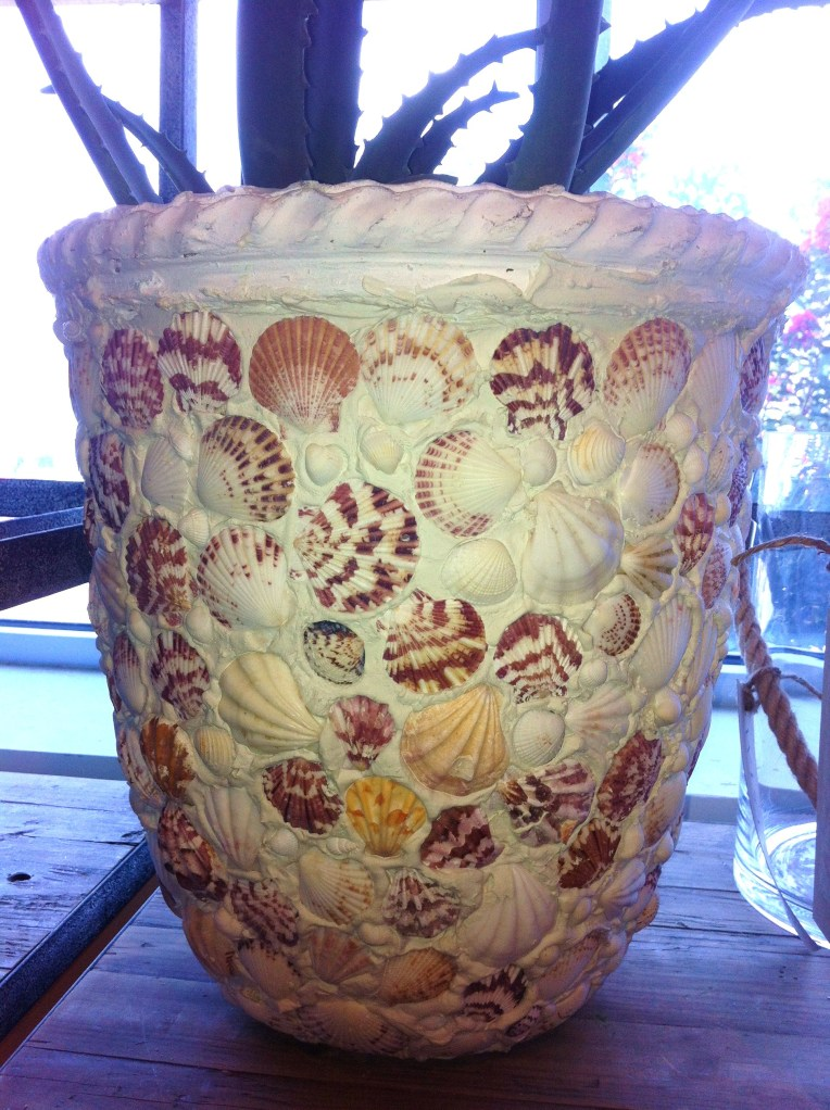 Shell Covered Flower Pot from Wisteria