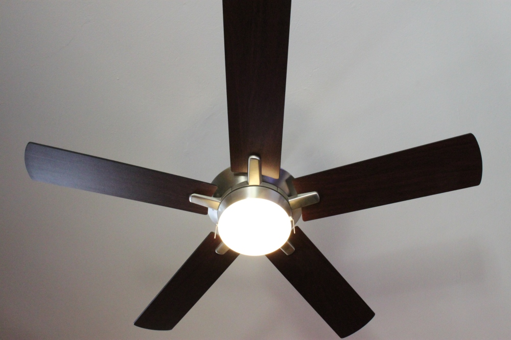 Heavy Ceiling Fan in the Den 2