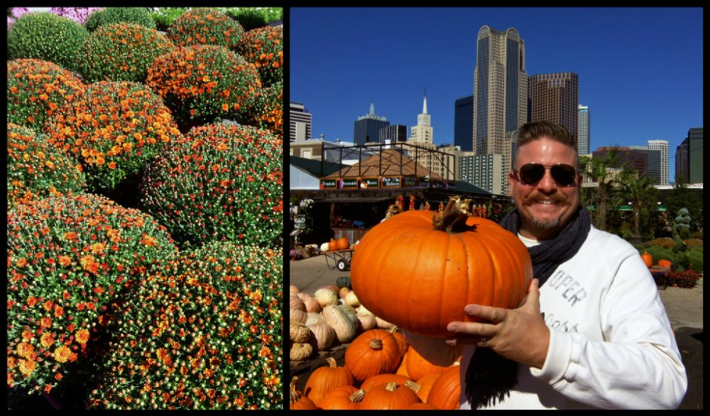 Autumn Farmers Market Collage2.jpg