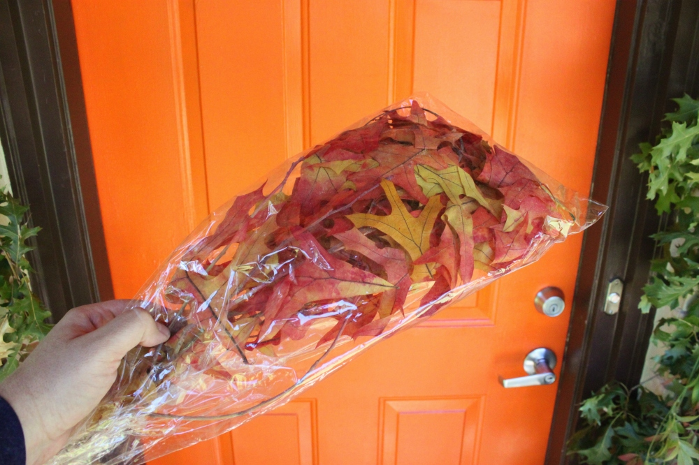 Preserved Fall Leaves from the Craft Store