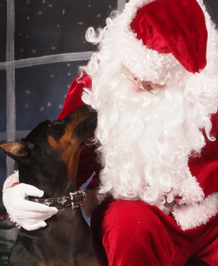 Harley Davidson Almost Kissing Santa