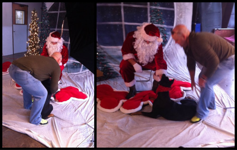 Harley's Pictures with Santa Collage2.jpg