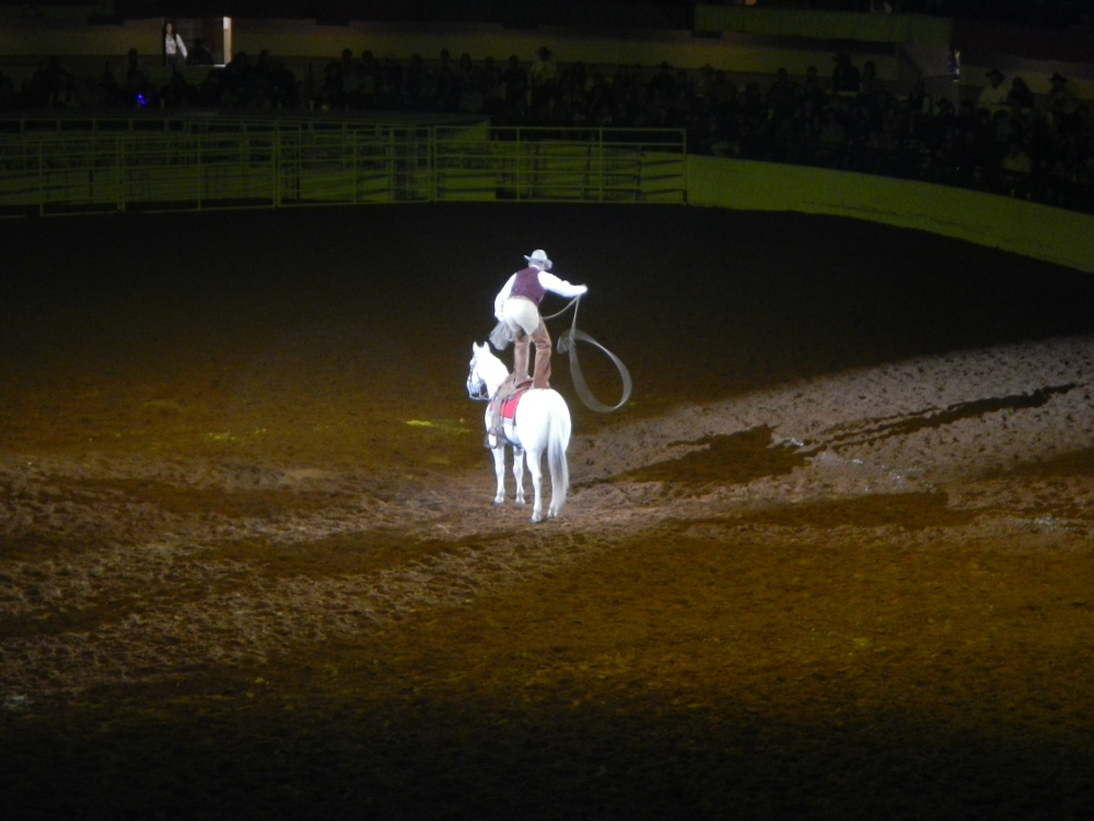 Lasso Artist at the Ft Worth Rodeo