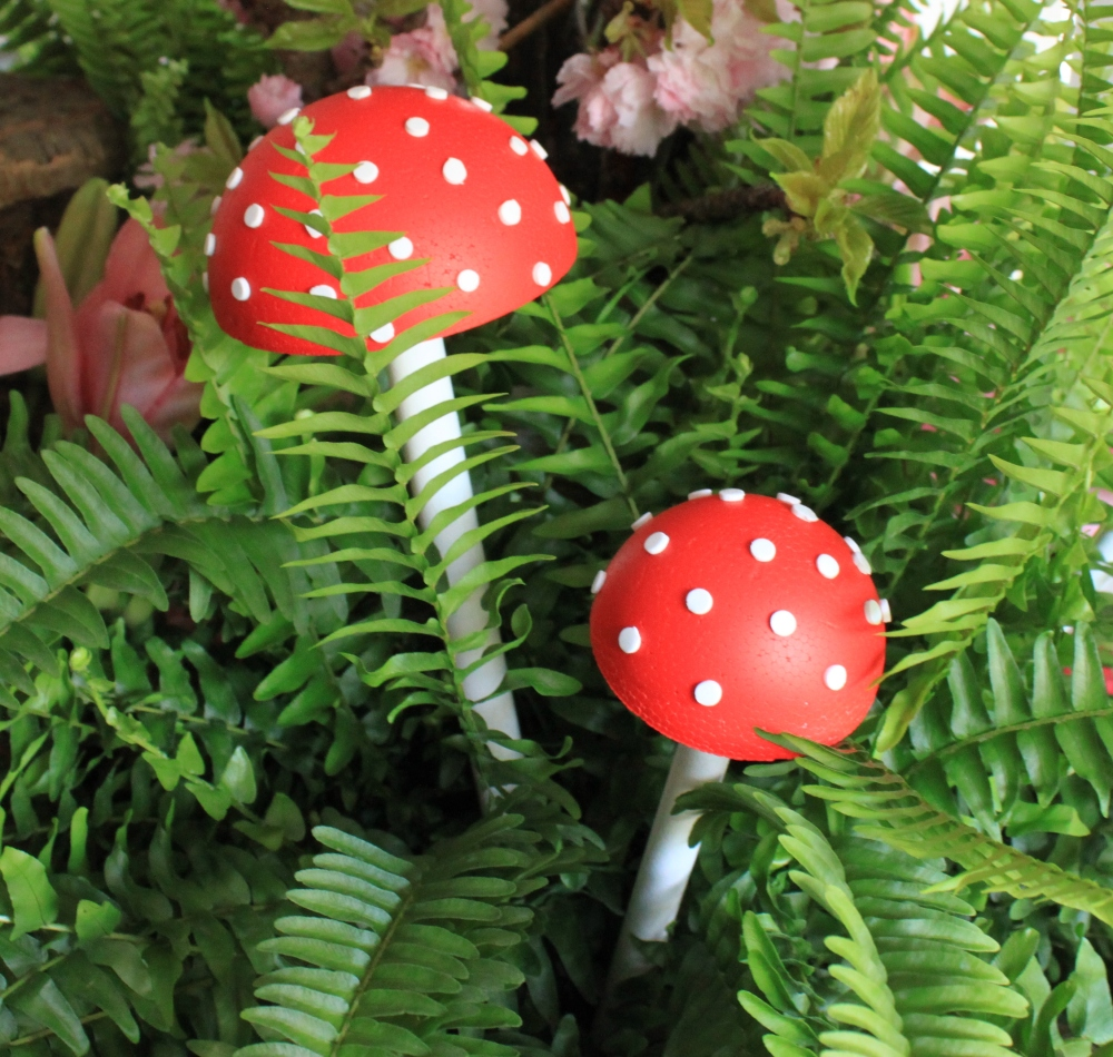 Toad Stools Tucked in the Ferns