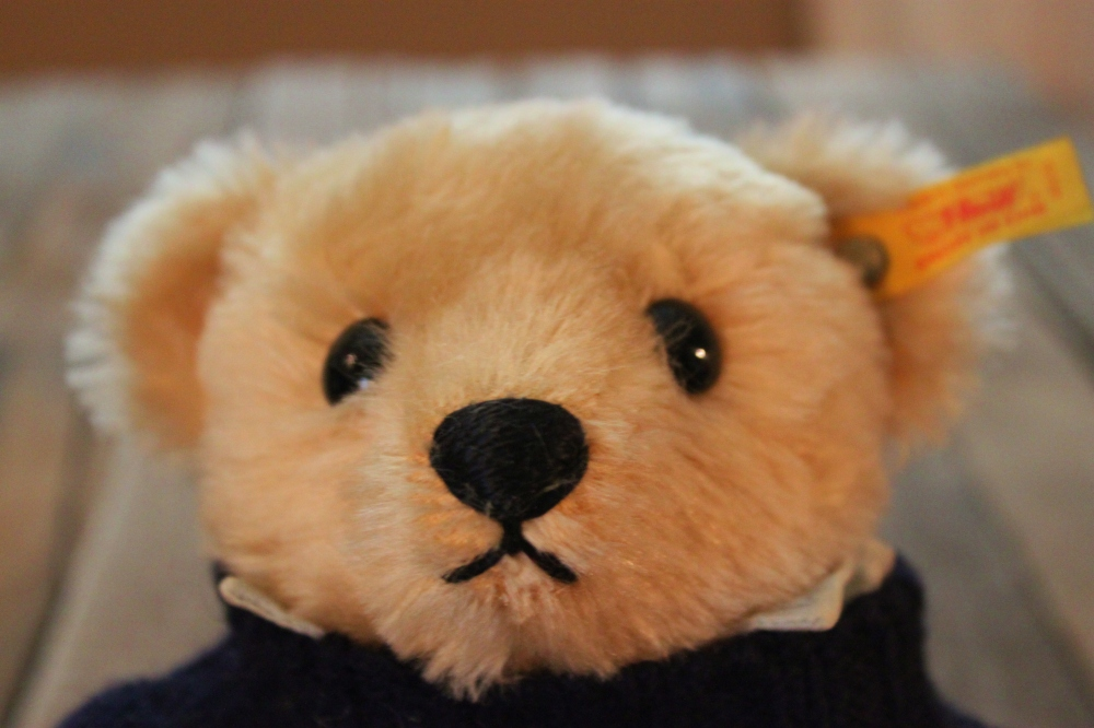 Steiff Teddy Bear Face