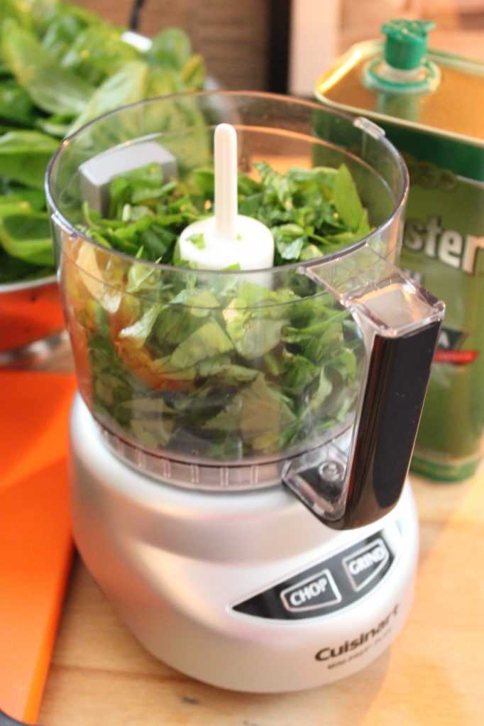 Small Food Processor for Making Pesto