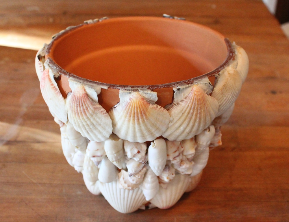 Store Bought Terracotta Pot with Shells Glued All Over it