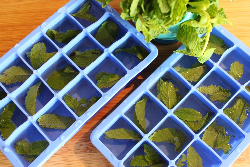 Silicone Ice Trays with Mint Leaves