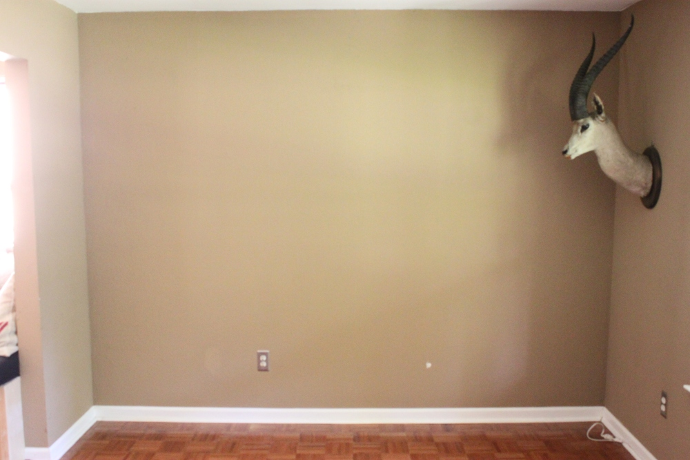 Empty Wall in the Living Room for My Shelves