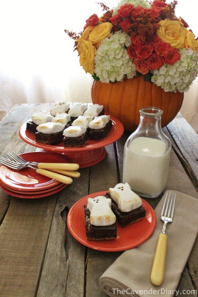 Yummy S'Mores Inspired Ghost Brownies from the Cavender Diary boys