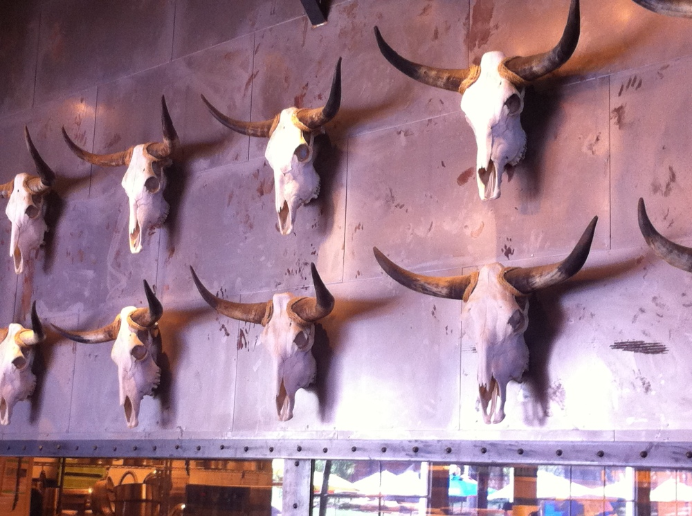 Wall of Cow Skulls at the Rustic