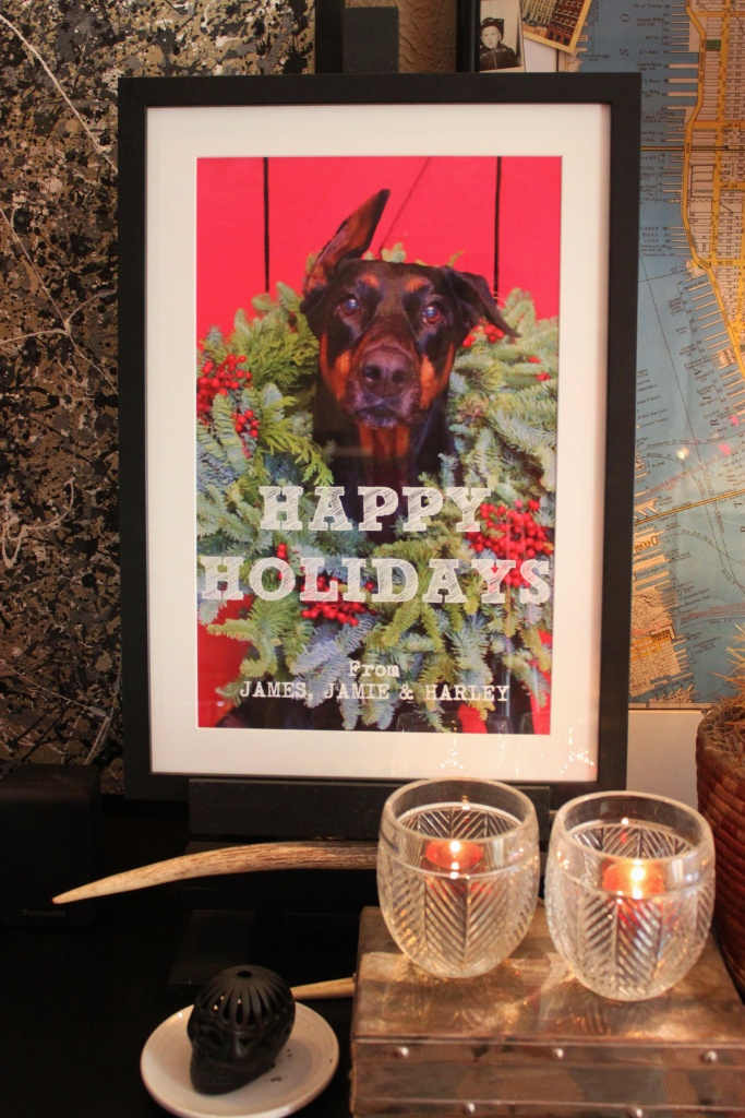 Happy Holiday from James Jamie and HArley in a Frame Christmas 2015