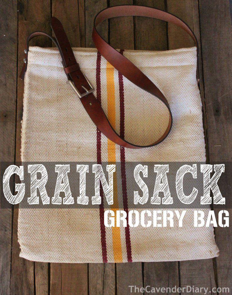 Grain Sack Grocery Bag from the Cavender Diary Boys