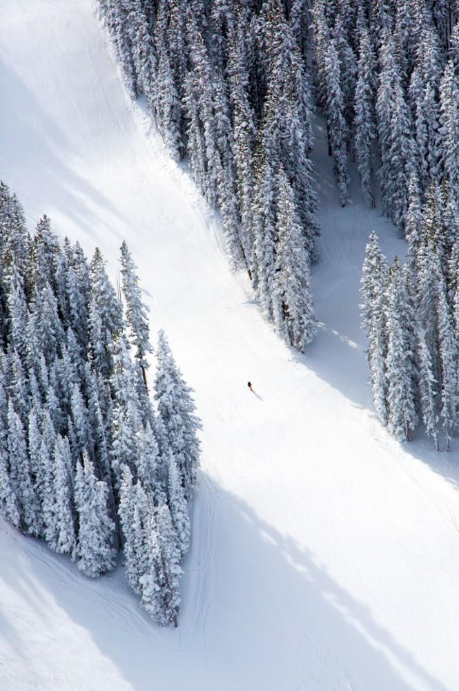 Aspen Lone Skiier by Gray Malin
