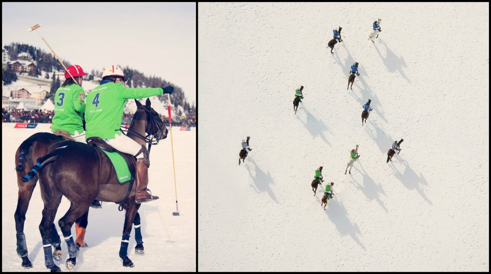 Gray Malin Winter Polo Collage