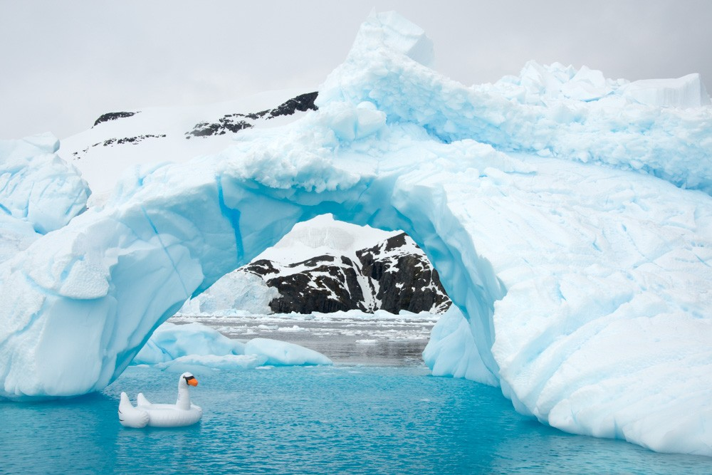 Swan Ice Arch by Gray Malin