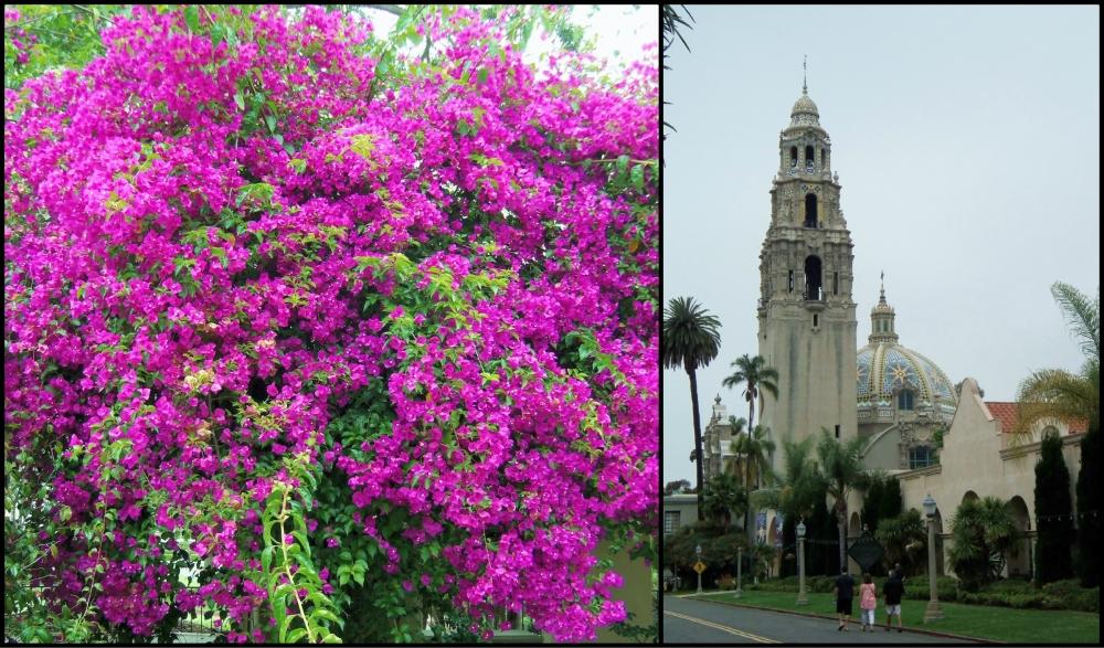 Balboa Park Collage