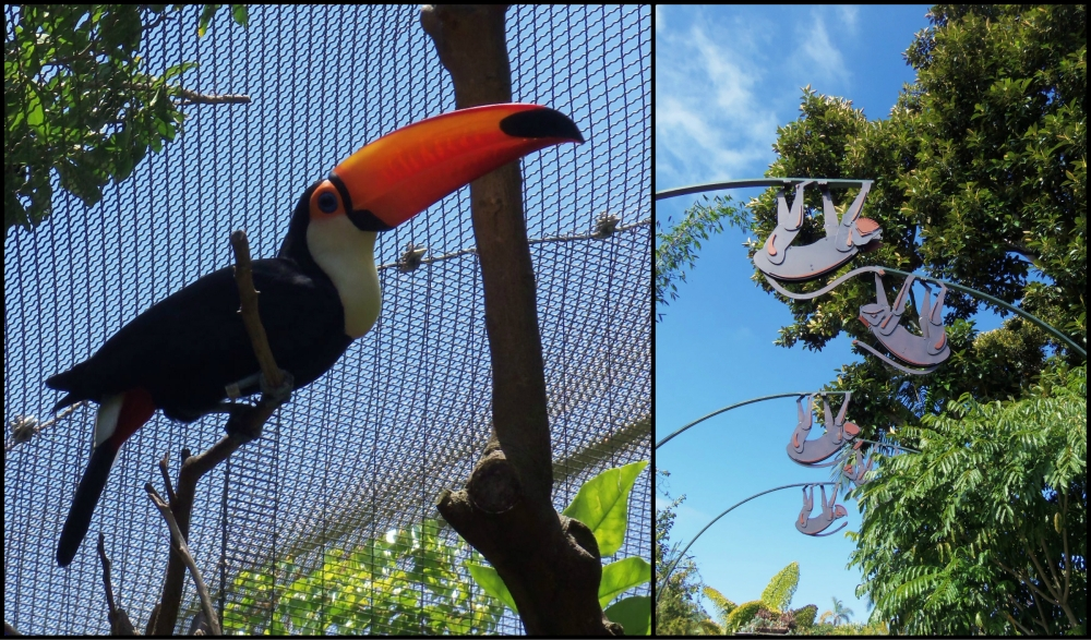 San Diego Zoo Collage 3
