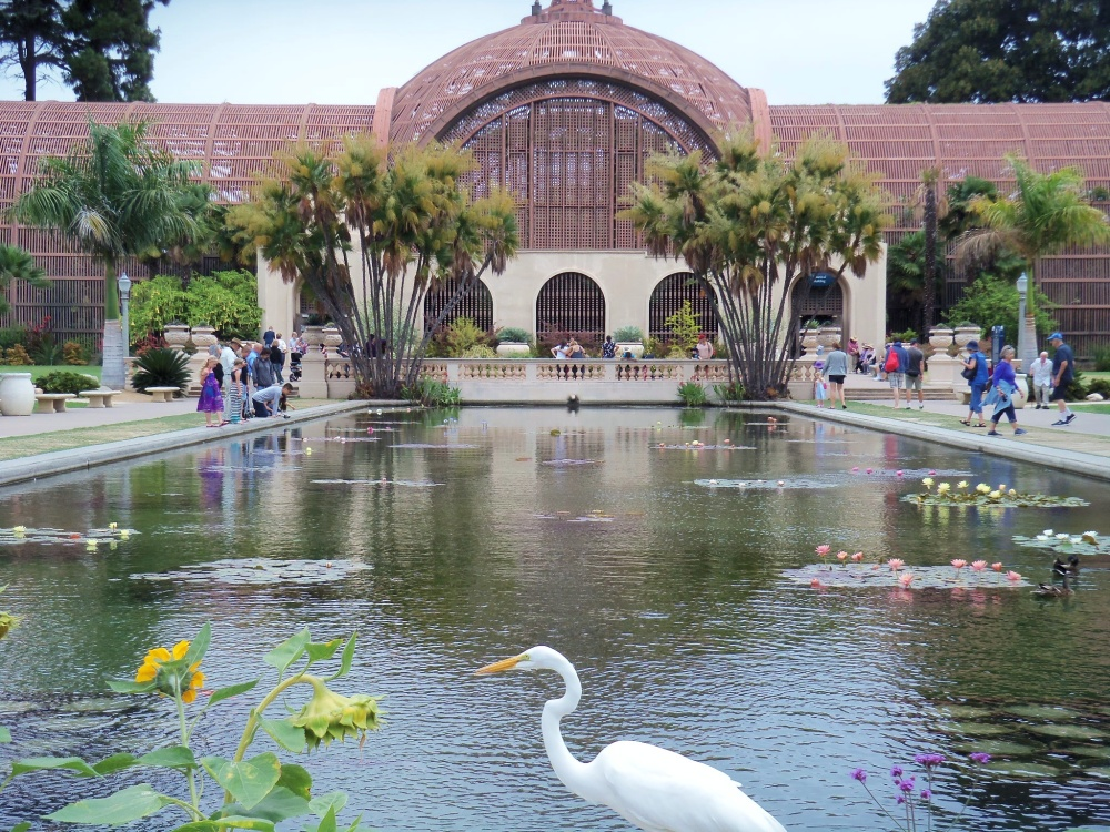 The Reflecting pool in Front of the Botanical Building