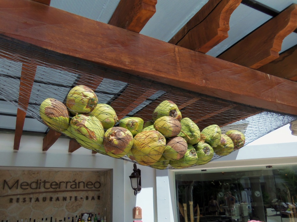 Coconuts Over the Outdoor Bar at the Royal Playa del Carmen