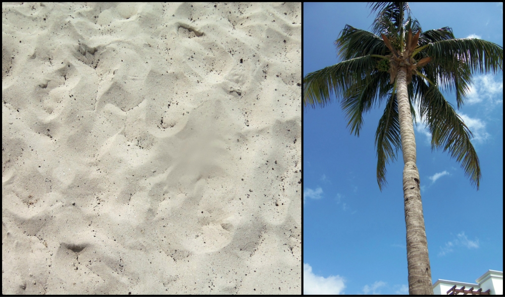 Playa del Carmen Beach Collage