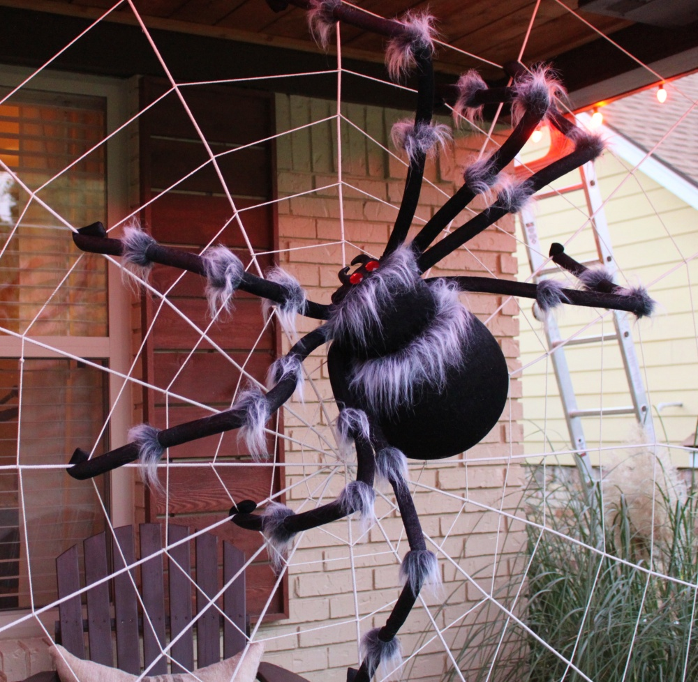 The Big Fat Store-Bought Spider in my Web