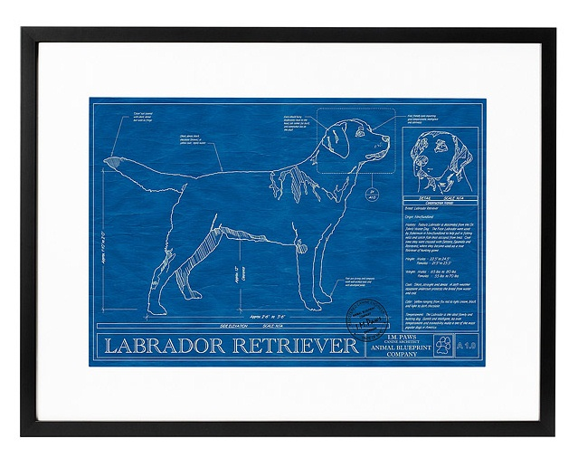 Dog Blueprints from Uncommon Goods