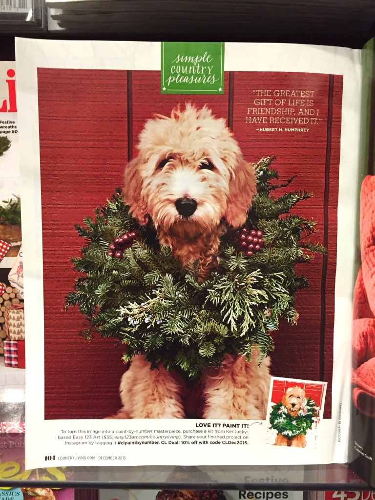 Country Living December Issue 2015 Last Page