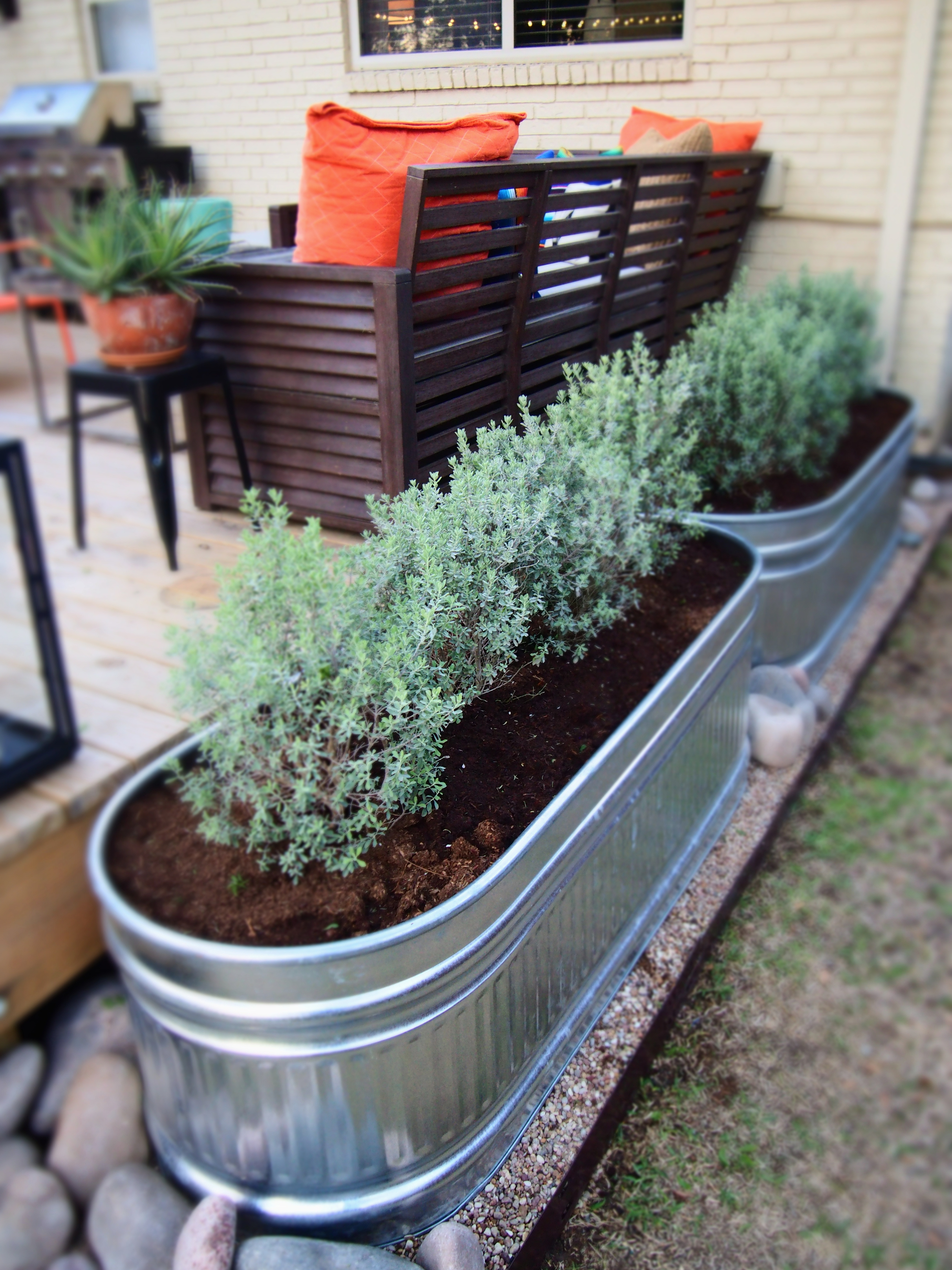 Horse Trough Planters The Cavender Diary