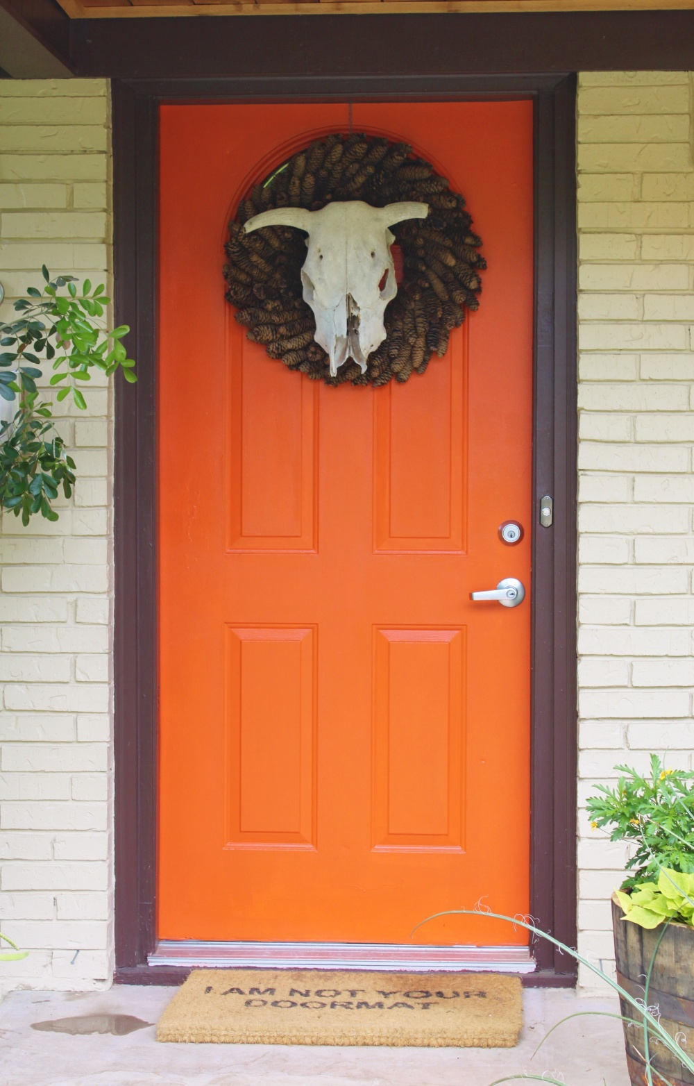Crappy Orange Front Door at the Cavender House