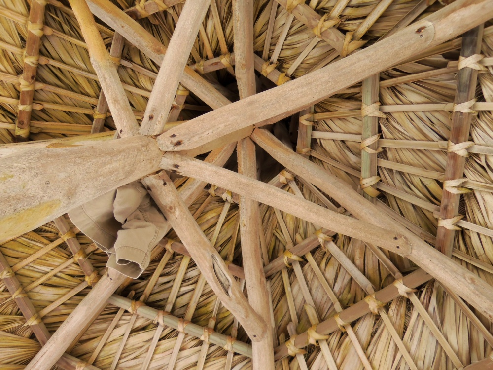Thatched Roof of our Umbrella