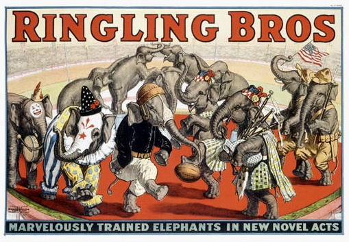 Ringling Bros Dancing Elephants Poster