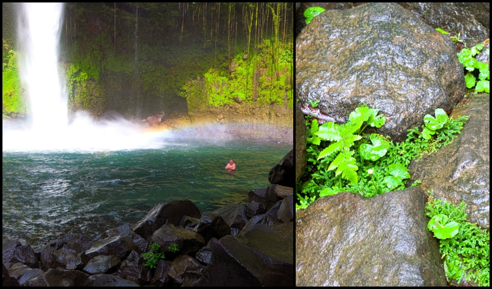La Fortuna Waterfall Collage