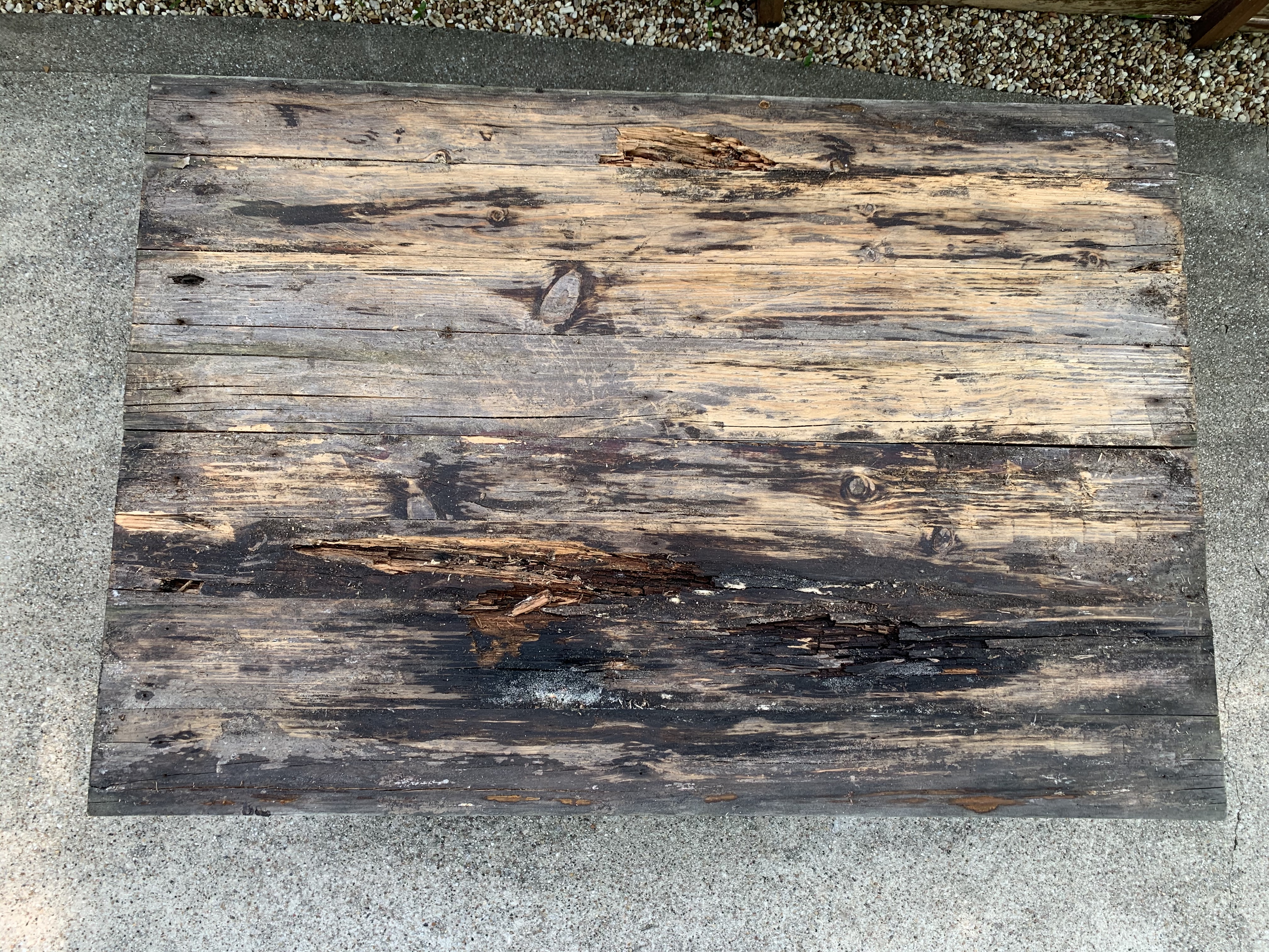 Rotten Wood Under Pallet Wood